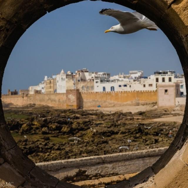 Maroc: tajine, argan şi schi pe dune de nisip