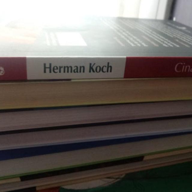 "Herman Koch, ""Cina"". Sau mai curând ""Capcana"""